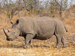 10 Days Taste of Namibia Safari, Wildlife, and Sightseeing Tour