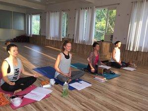 7 Days Yoga and Meditation Retreat in Rishikesh, India
