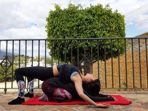12 Day 100-Hour Yin Yoga Teacher Training: Functional Anatomy and Chinese Medicine in Mijas, Málaga