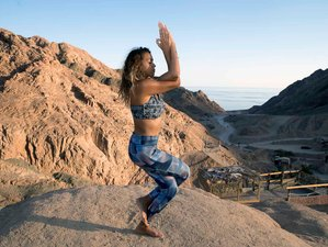 8 Day Christmas and New Year Yoga Holiday in Dahab