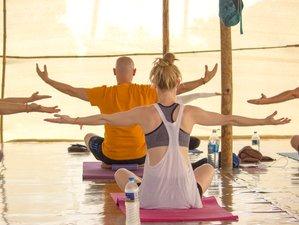 52 Tage 500-Stunden Hatha und Ashtanga Yogalehrer Ausbildung in Goa