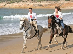 5 Days Amazing Horse Riding Holiday Andalucia, Spain