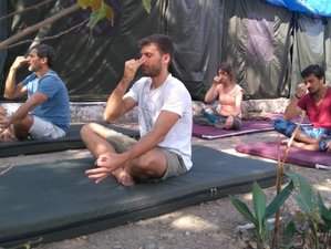 5 Days Yoga Camp in India