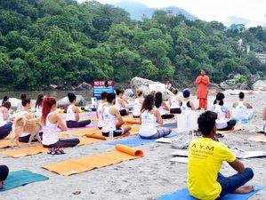 59 Days 500-Hour Multi Style Yoga Teacher Training in Rishikesh, India