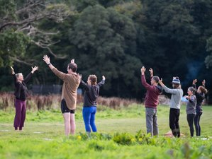 4 Day Weekend Yoga and Wellness Retreat in the Avon Valley