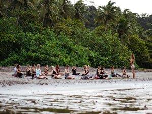 21 Tage 200-Stunden Yogalehrer Ausbildung in Dominical