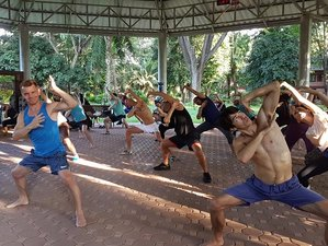 21 Days 5 Element and 8 Trigram Medical Qigong Intensive and Teacher Training in Chiang Mai,Thailand