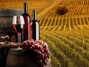 9 Days Road of Wines Culinary Vacations in Italy