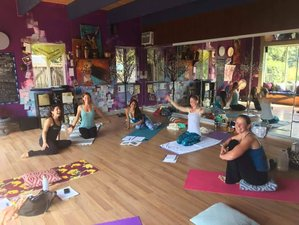 22 Days 200-Hour Yoga Teacher Training in Hawaii, USA