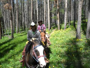 5 Day Dude Ranch Vacation with Daily Riding in Carbon County, Wyoming