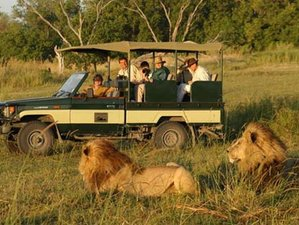 3 Days Pilanesberg Game Reserve Safari in South Africa