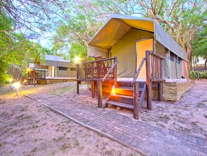 3 Days Big Five Tented Safari, Kruger National Park, South Africa