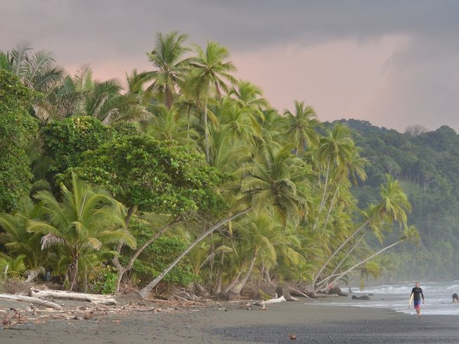 7 Days Yoga and Surf Camp in Punta Banco, South Puntarenas, Costa Rica