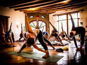 4 Day Weekend Yoga Immersion with Durga's Tiger School in Sornetan