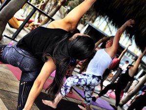 5 Days Energy-Balancing Detox Yoga Retreat in Palomino, Colombia