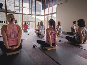 5 Day Meditation Retreat with Yoga in the Picturesque Dandenong Ranges, Victoria