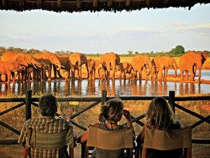 6 Days Amboseli, Tsavo East, Tsavo West, and Taita Hills Safari in Kenya