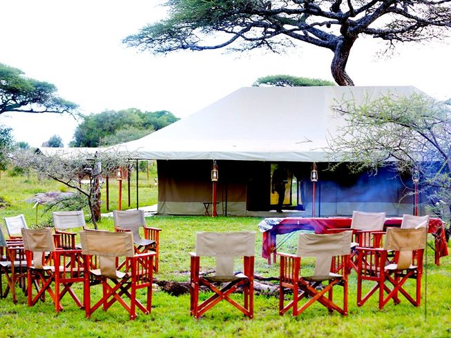 6 Days Lake Manyara, Serengeti, and Ngorongoro Safari in Tanzania