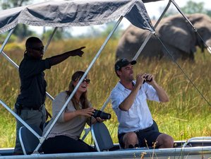 6 Days Luxury Wildlife Safari in Botswana