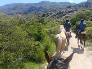 10 Day Horseback Riding Expedition from the Traslasierra Valley to the Los Gigantes Mountain Range