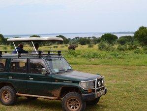 5 Days Kidepo Valley National Park Budget Safari in Uganda