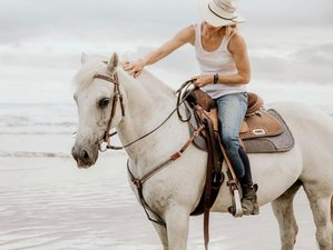 2 Days Idyllic Getaway and Coastal Trail Horse Riding Holiday in Northland, New Zealand