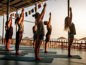 22 Day 200-Hour Yin Yoga Teacher Training with Vinyasa Flow in Goa