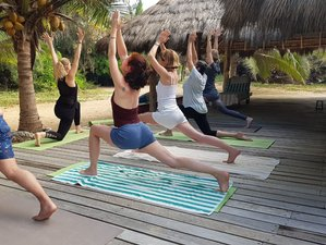 22 Day 200-Hour Ashtanga, Vinyasa, and Yin Yoga Teacher Training in Gili Air, Lombok