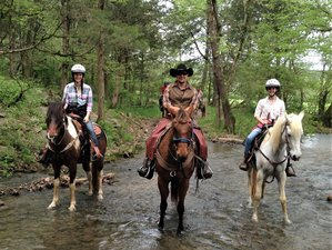 4 Day Life of a Cowboy Dude Ranch Vacation in Sequatchie Valley, Tennessee