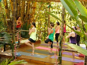 8-Daagse Spa, Detox en Yoga Retraite in Costa Rica