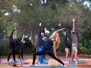 4 Days Somerset Spring Renewal Detox, Meditation and Yoga Retreat UK