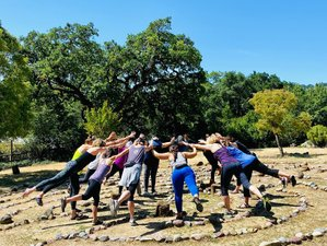 4 Day Make Space in Your Life for You: Annual Women's Yoga Retreat in Sonoma, California