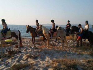 8 Day Horseback Riding Holiday in the Beautiful Kos Island, South Aegean