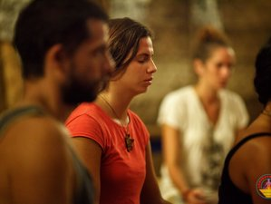 6 Day Heal Your Heart Meditation and Yoga Retreat in Kerala