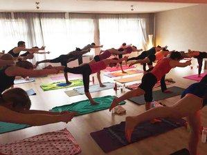 12 Tage 100-Stunden Hot Vinyasa Flow Yogalehrer Ausbildung in den Niederlanden