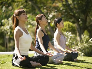 7 Days Chakra and Meditation Retreat in Victoria, Australia
