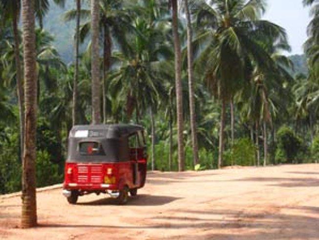 10 Days Mindfulness and Yoga Retreat in Sri Lanka
