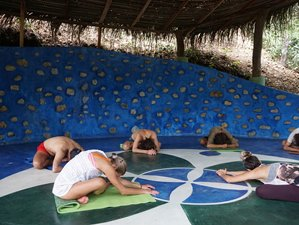 6 Day Restore and Recharge Yoga Retreat In Nosara, Guanacaste