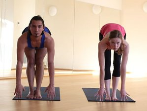 6 Days Correct Vinyasa Alignment Hot Yoga Teacher Training Spain