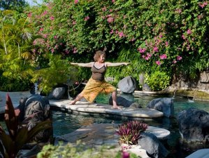 7 Days Namaste Ubud Yoga Retreat