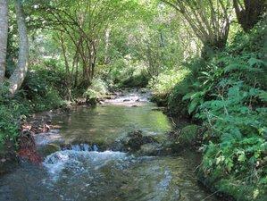 4 Days Tao Yoga, Qigong & Meditation Retreat in Ariège, France