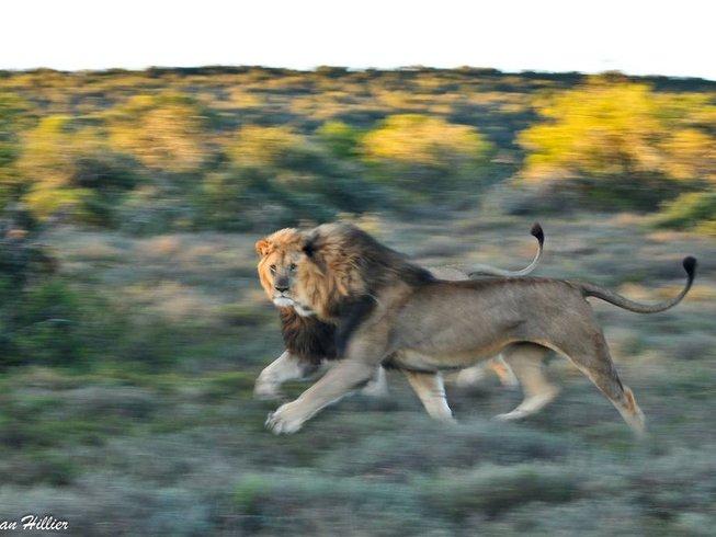 5 Days Walking Safari South Africa
