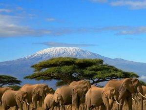 5 Days Southern Circuit Safari in Kenya