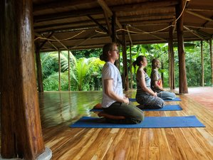 7 Days Body and Mind Yoga Retreat in Costa Rica