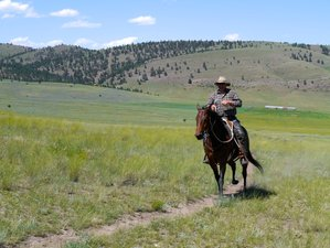 14 Days Exciting Ranch Vacation in Montana, USA