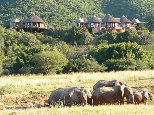 22 Days Unforgettable Safari in South Africa