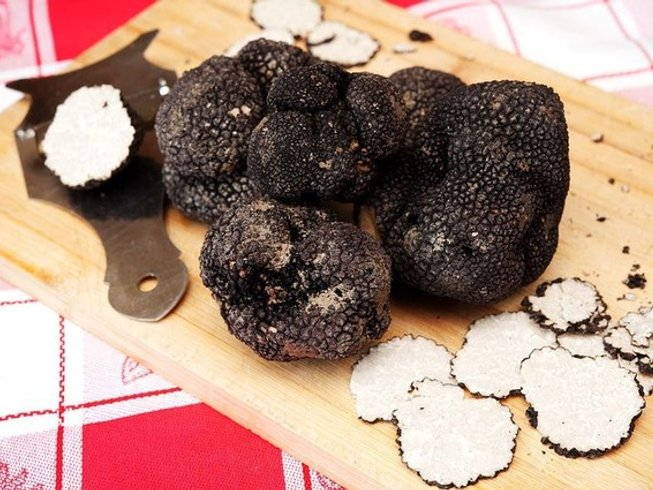 7 Days Truffle Hunting, Food & Wine Tour in Italy