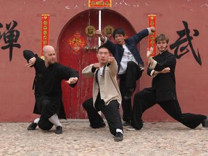 7 Days Kung Fu Experience &Tai Chi Retreat in Handan (Birthplace of Taichi),China