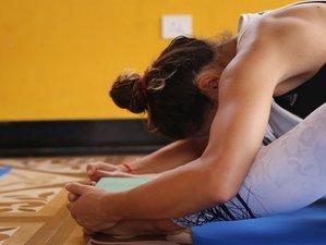 27 Days 200-Hour Traditional Interflow Yoga Teacher Training in Rishikesh, India