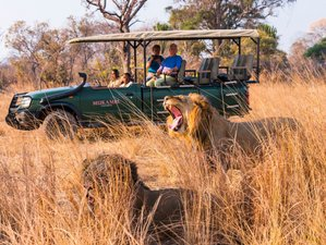 8-Daagse Onvergetelijke Safari in Nationaal Park Kafue, Zambia